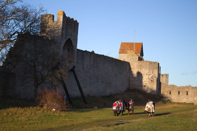 Rear view of people in medieval costumes with horses by historic buildings against clear sky