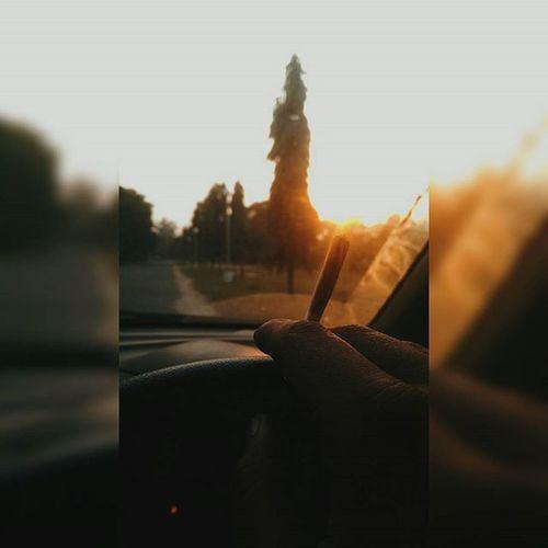 Drive Car Driving Smoke Weed Weedgram High Highlife Okbye