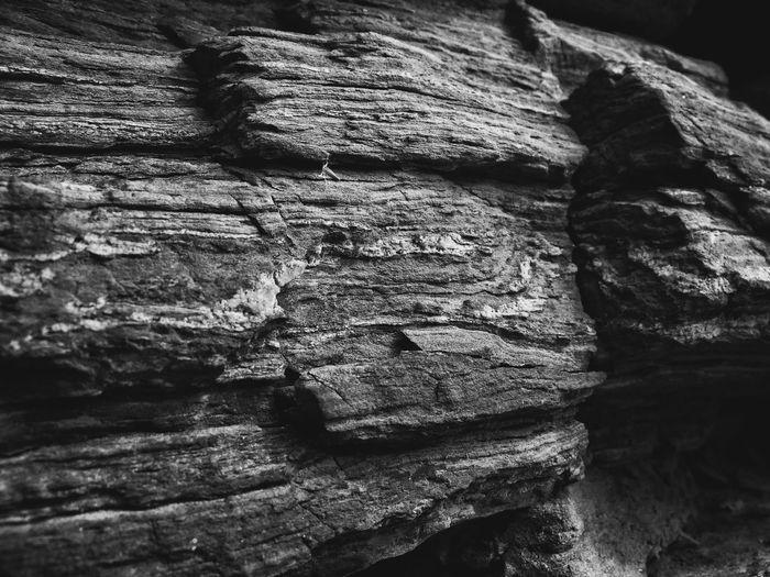 横縞の層になってる石を積んでた和歌山城の石垣。こんな石使ってる石垣ほかにあったかな? Border Stones Stone Layers Japanese Stone Wall Close-up Stone Wall Textures And Surfaces Texture Nature Textures Nature Photography From My Point Of View Monochrome Blackandwhite Light And Shadow EyeEm Nature Lover EyeEm Best Shots