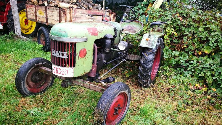 Grass Transportation Outdoors Tractor Hatz Hatzfeld Agriculture Agricultural Machinery Machinery Trekker Landbouw Farm Equipment Farming Vehicles Vehicle Old Vehicle Oldtimer