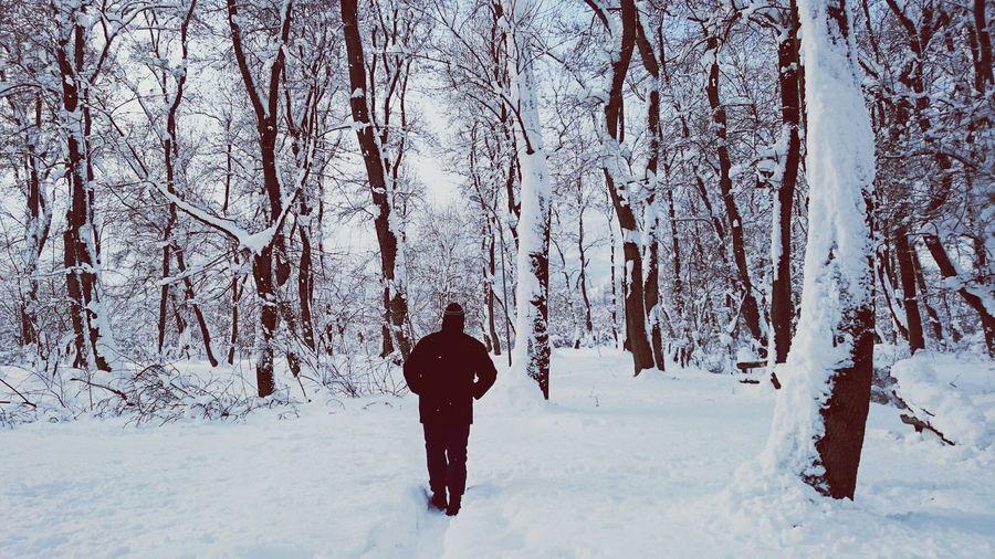 Human Snowwhite Nature Photography Winter Morning EyeEm Nature Lover EyeEmBestPics Eyeemnature Eyeemnaturelover Wintertime Snow ❄ Winter Cold Winter ❄⛄ Snow EyeEm EyeEm Best Shots Snow Day
