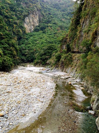 陡峭的溪谷地形 National Park Valley Plank Trail