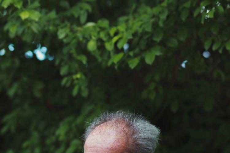 Close-up senior man against trees