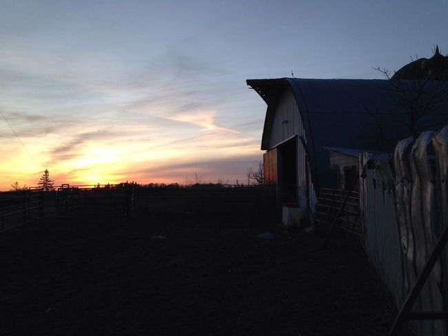 Down on the Farm Beauty In Nature Landscape Nature Outdoors Building Exterior Silhouette No People Sky Architecture Built Structure Sunset Barn Sunset Silhouettes Old Painted Sky