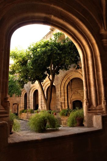 Claustro No People Light And Shadow Window Arquitecture Tree Architectural Column Arch History Architecture Built Structure