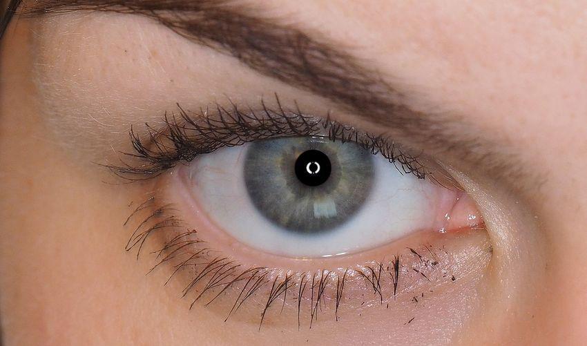 Close-up of gray eye