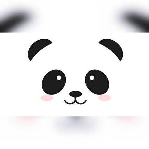 PANDA ♡♡ 🐼😍