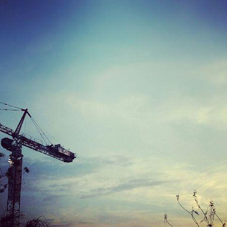 Skyporn Sky Sunset Lookup crane tlv telaviv ig_israel instadaily instamood