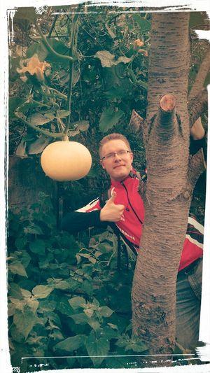 Big apple in ghosts garden