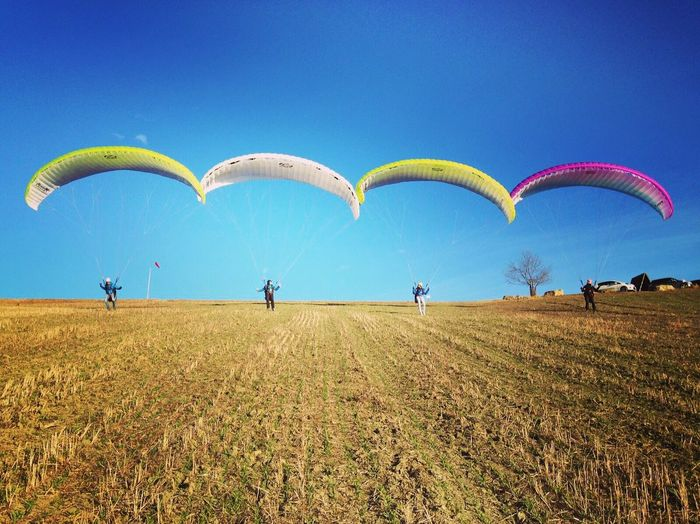 View Of Paragliders On Field