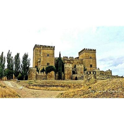 Castillo de Ampudia, en la provincia de Palencia, es del siglo xv, está considerado el castillo palentino más bonito. El pueblo donde se encuentra, Ampudia es conjunto histórico, merece la pena la visita. Chumbea Castle Medieval SPAIN Castillayleon Arkitecture_details Total_architecture Medievalworld Castle_oftheworld Arkitectureart Arkitecture_art Landscape Monumento Total_CastillayLeon Total_spain Total_europe Beauty Total_world Be_one_spain Be_one_architecture Ok_castillaleon Descubriendoigers Total_Medieval primerolacomunidad igerspain ig_europe fotoadictes spain_beautiful_landscapes