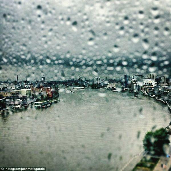 As The Rain Falls ..