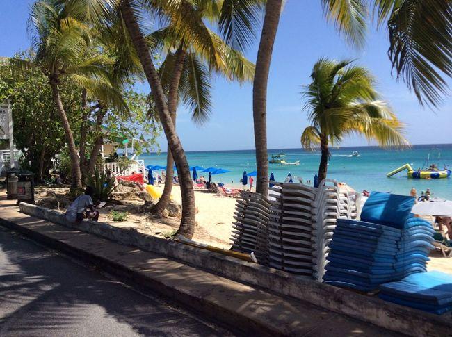 Enjoying The Sun Barbados Travel Tropical