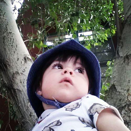 Playingwiththetrees Fascinated Supercutebaby Sunhat Waitingforgrandma