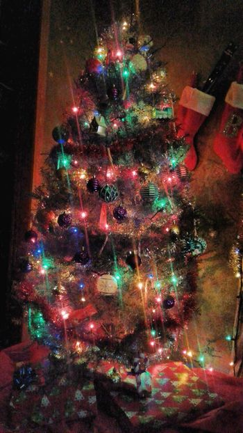 Lights on the Tree Celebration Christmas christmas tree Illuminated Tradition Night Christmas Decoration Holiday - Event Christmas Ornament Christmas Lights Multi Colored No People