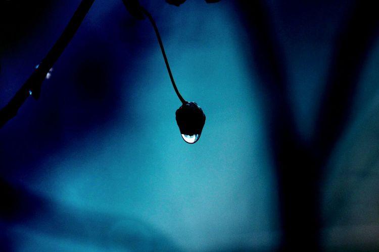 капля капли дождя каплидождя весна синий синийсиний Blue Rain Rainy Days Raindrops Drop
