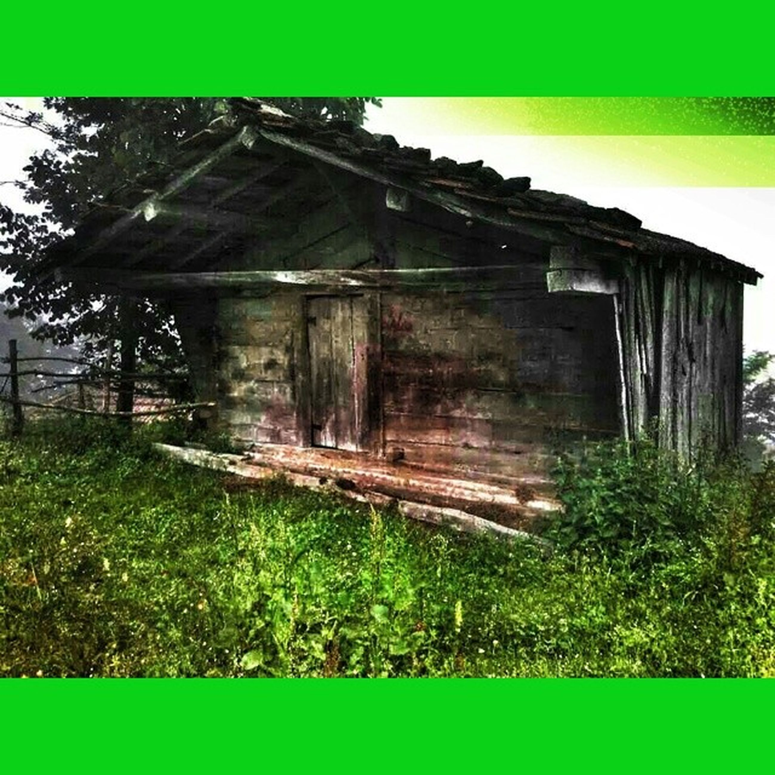 built structure, architecture, wood - material, abandoned, grass, old, building exterior, green color, weathered, damaged, wooden, obsolete, house, deterioration, run-down, field, day, wood, plant, outdoors