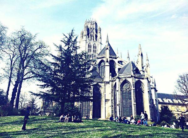 Rouen Pique Nique Amis  Soleil ☀️ Bonheur 😀