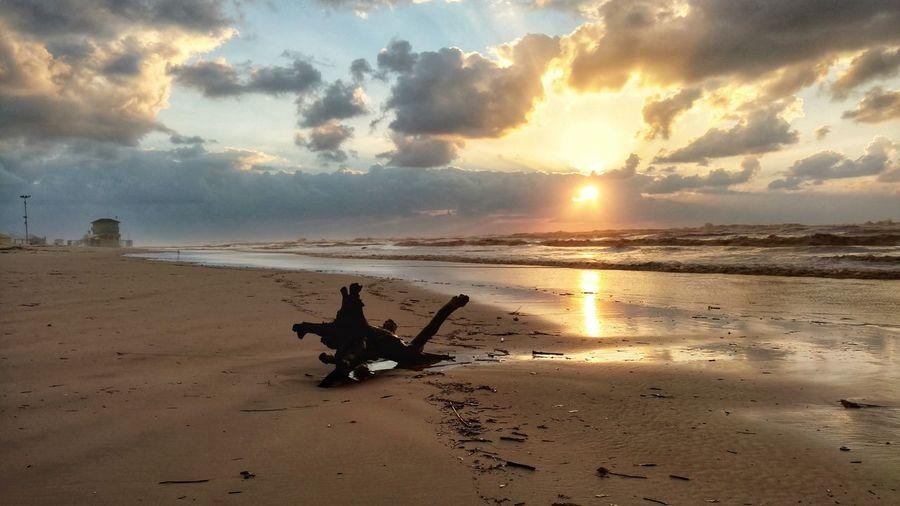 Sunset . Sea