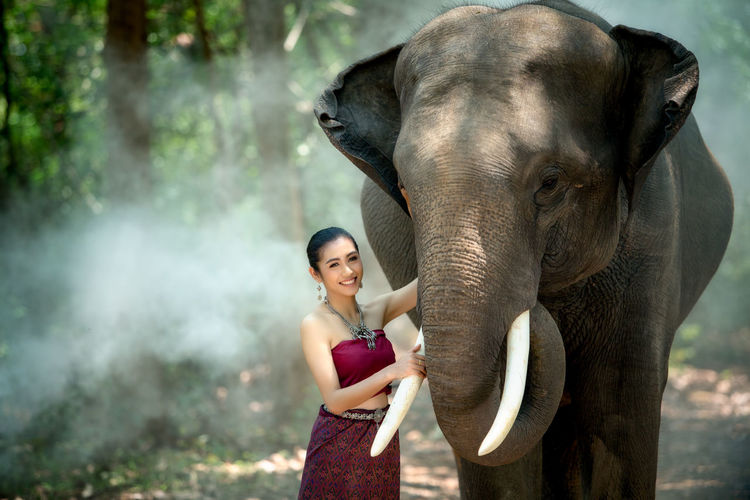 Asian woman enjoying with elephant at Chang Village Surin province Thailand. Thailand Woman Adult Animal Animal Trunk Animal Wildlife Day Elephant Focus On Foreground Forest Herbivorous Mammal Mammals One Animal One Person Outdoors Portrait Real People Smile Standing Tree Vertebrate Women Young Adult Young Women The Fashion Photographer - 2018 EyeEm Awards