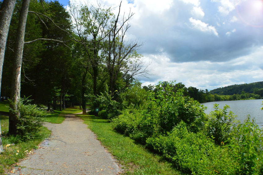 Beauty In Nature Caryville Tennessee Cloud Cloud - Sky Cloudy Cove Lake State Park Day Footpath Grass Green Color Idyllic Lake Landscape Narrow Nature No People Outdoors Sky Summer 2016 The Way Forward Tranquil Scene Tranquility Tree