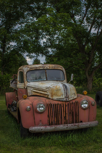 Antique fire truck Antique Car Old Fire Truck Abandoned Antique Truck Damaged Day Field Growth Nature No People Obsolete Old-fashioned Outdoors Rusty Rusty Autos Transportation Tree