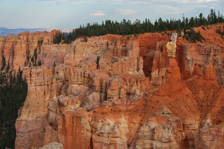 Bryce Canyon at sunset Nature No People Travel Destinations Rock Beauty In Nature Bryce Canyon Utah Sunset Travel Rock Formation Geology Non-urban Scene Rock - Object Solid Sky Tourism Physical Geography Scenics - Nature Tranquility Eroded Tranquil Scene Day Canyon Tree Outdoors