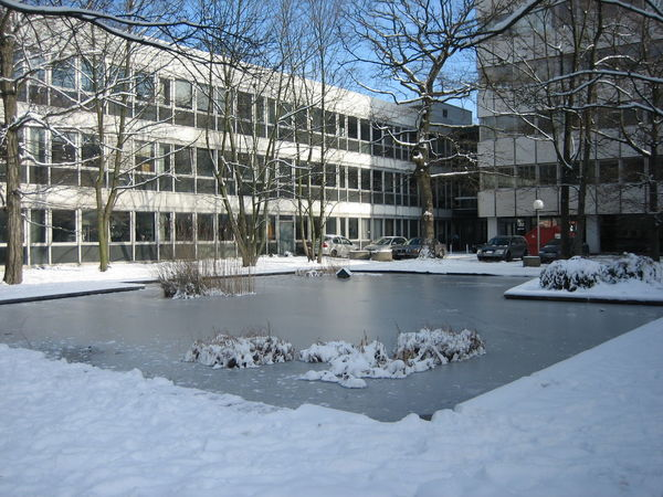 Photos of Karlsruhe, Germany 2007 Architecture Bare Tree Branch Building Exterior Built Structure Cold Temperature Day Frozen Nature No People Outdoors Snow Snow ❄ Tree Winter Winter Winter Trees Winter Wonderland Wintertime Winterwonderland