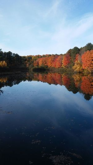 The Minimals EyeEm Best Shots - No Edit The Purist (no Edit, No Filter) Fall Colors Water Reflections Lake Blue Sky Nature Heaven And Earth Water My Best Photo 2015
