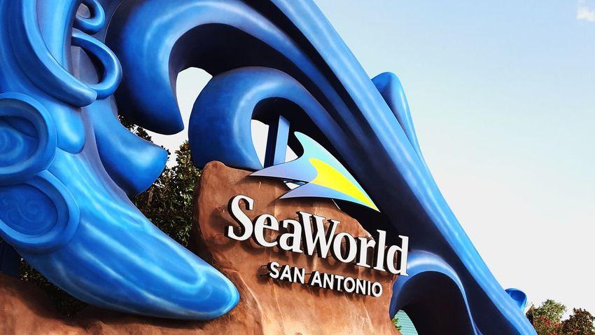 EyeEm Selects Vacation Sea World San Antonio, TX