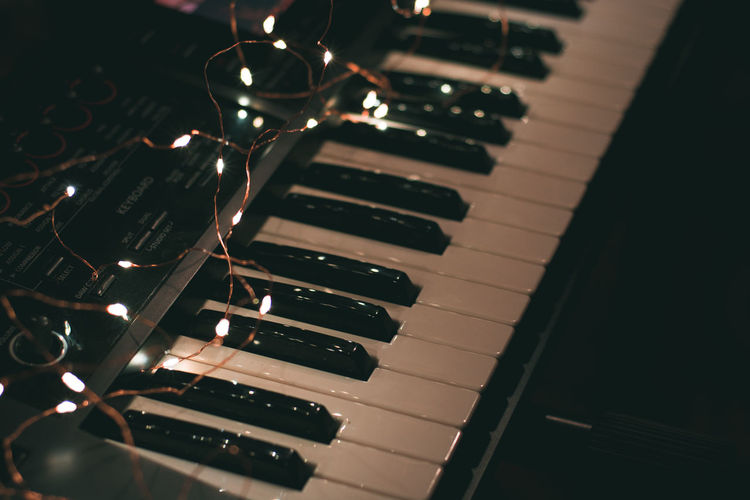 Indoors  Piano No People Musical Equipment Close-up Musical Instrument Piano Key Music Arts Culture And Entertainment High Angle View Still Life Selective Focus Focus On Foreground Metal In A Row Reflection Pattern Keyboard Repetition Detail