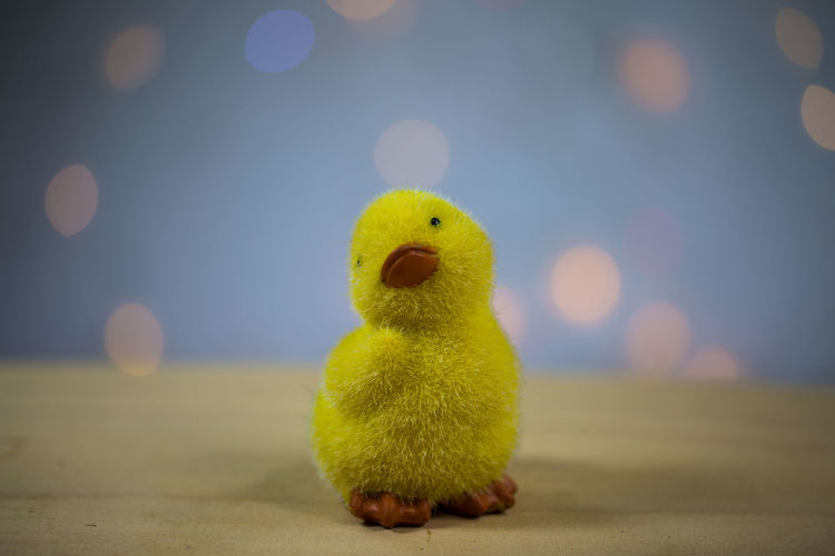Close-Up Of Toy Duck On Table