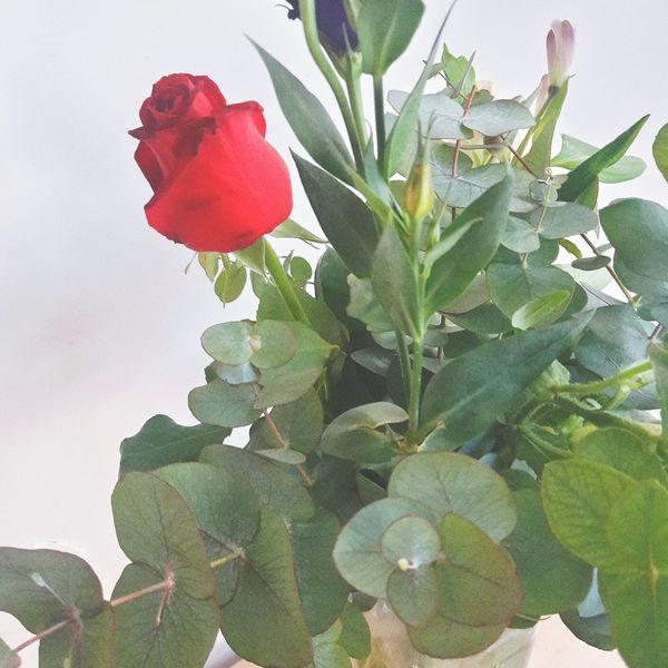 פרחים יפים זר לשבת
