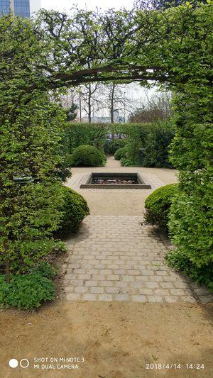 No filter Park - Man Made Space Sky Plant Garden Botanical Garden Garden Path Botanical Park