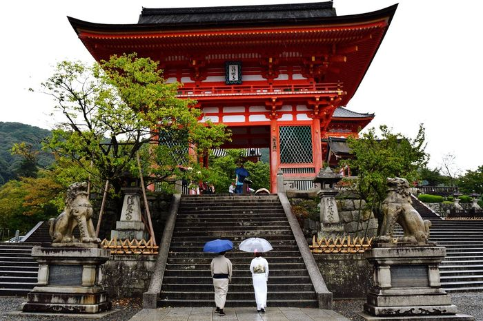 Japanese Temple Kimono Umbrella Eyeemphotography Taking Photos Japan Silouhette