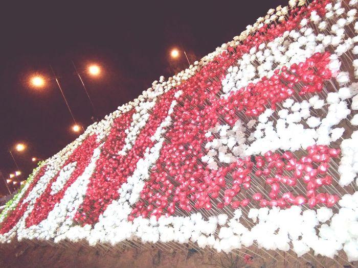 Malaysia Scenery Love Light Roses Tulip Patriotism Night Flag Outdoors No People Sky Nature