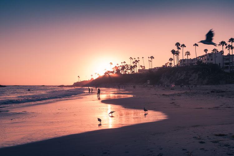 Laguna Beach in