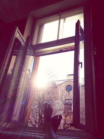 Spring From My Window Altbau Wohnglück
