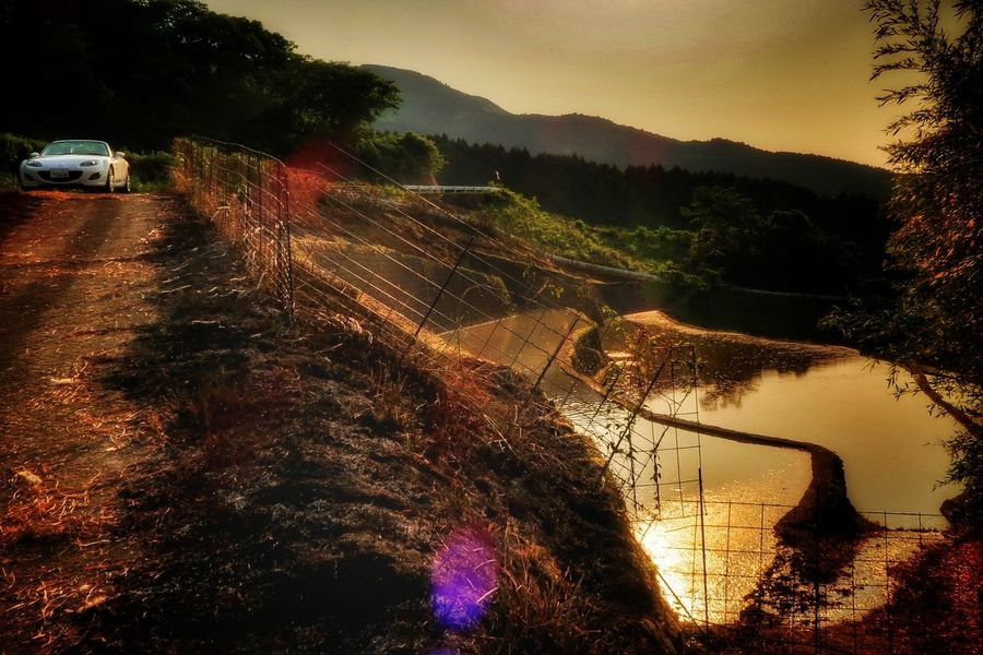 マツダ ロードスター Mazda MX-5 Miata 絶景 棚田 黄金 日本の絶景 山 自然 Sunset EyeEm Nature Lover EyeEm Best Shots Water Water Reflections Mountain Beautifulview Beauty In Nature Rice Paddy Cereal Plant Farm Rice - Cereal Plant 写真好きな人と繋がりたい 写真撮ってる人と繋がりたい