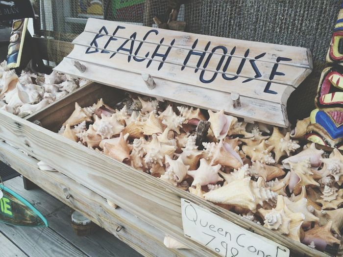 Virginia Beach Wooden Bridge Beach House Sea Shell I miss!