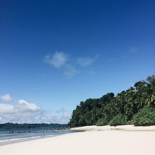 White deserted beach in Parque Nacional de Isla Coiba, Santa Catalina, Panama. Panamá Square Beach Beauty In Nature Blue Blue Sky Day IPhoneography Mobile Photography Mountain Nature No People No People, Outdoors Paradise Sand Scenics Sea Sky Tranquil Scene Tranquility Travel Destinations Tree Tropical Water