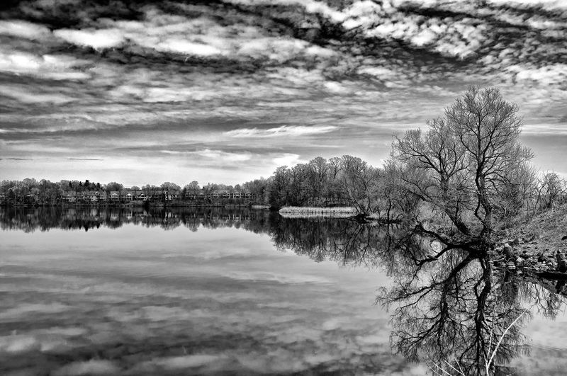 Monochrome Springtime A calm, spring afternoon provides unexpected and stark beauty in the suburbs. B&w Photography Beauty In Nature Cold Temperature Lake Outdoors Reflection Tranquility Tree Water B&w Landscape