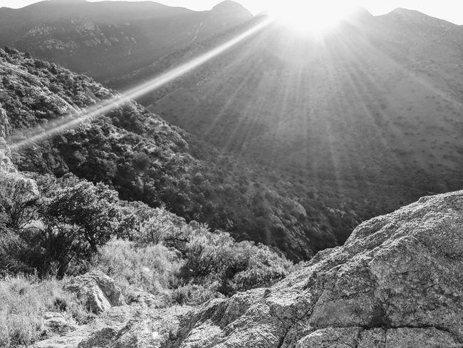 Blackandwhite Black And White Black And White Photography AnselAdams Ansel Adams Inspired Desert Sunburst High Desert Landscape Lens Flare Mountain Sun Light Sun Rays Sunlight