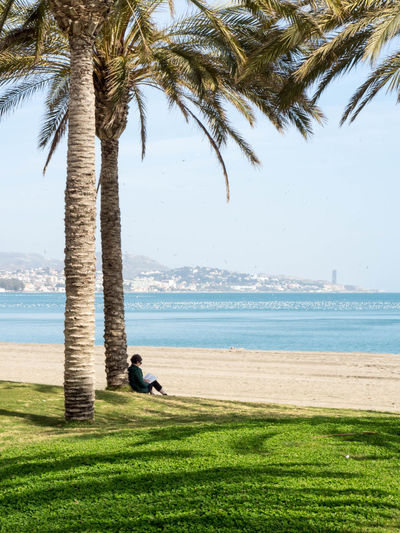 Adult Beach Beauty In Nature Day Grass Holiday Horizon Over Water Leisure Activity Nature One Person Outdoors Palm Tree Reading Real People Relaxation Relaxing Sea Sitting Tree Tree Trunk Water