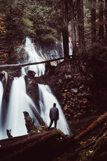 Man standing by waterfall in forest