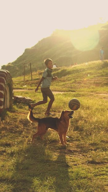 Pet Portraits Dog One Boy Only Children Only Pets Full Length Child Childhood One Animal One Person People Boys Eyeemnepal Sunlight Domestic Animals Outdoors Day Only Boys Animal Themes Grass Sunset Golden Hour Golden Light Football