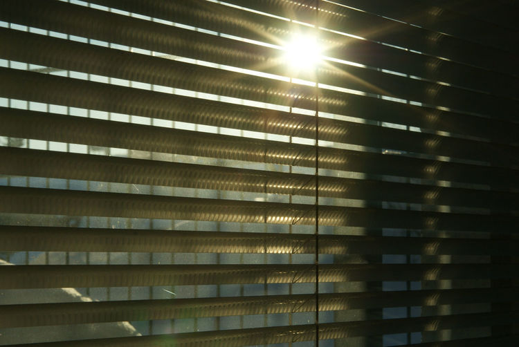 Sun shades Cold