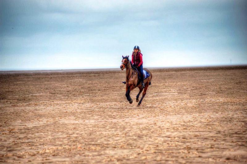 At Theddlethorpe Beach Theddlethorpe Horse Horses Horse Riding Horseriding