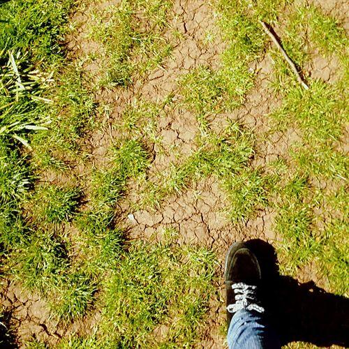 Shoes Walking Around Taking Photos Green Dry Bristol Spring South