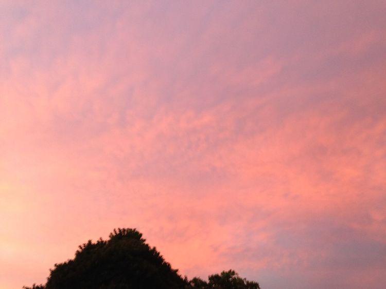 Beatiful Sky